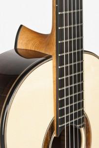 Gitarre-Ochs-Halsfuss